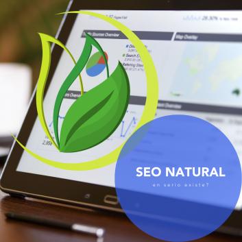 posicionamiento web seo natural